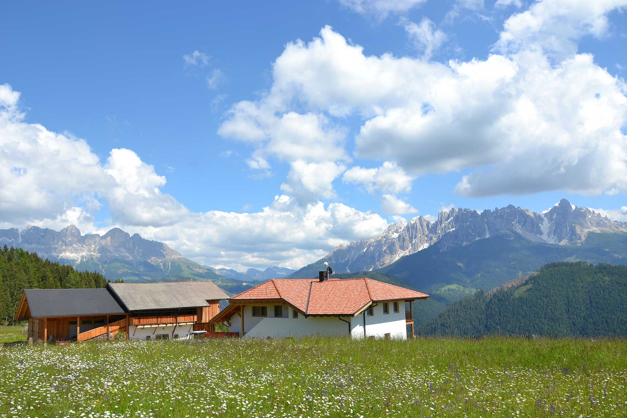 Panoramic view tot he Dolomites - mountain farm in Welschnofen/Nova Levante